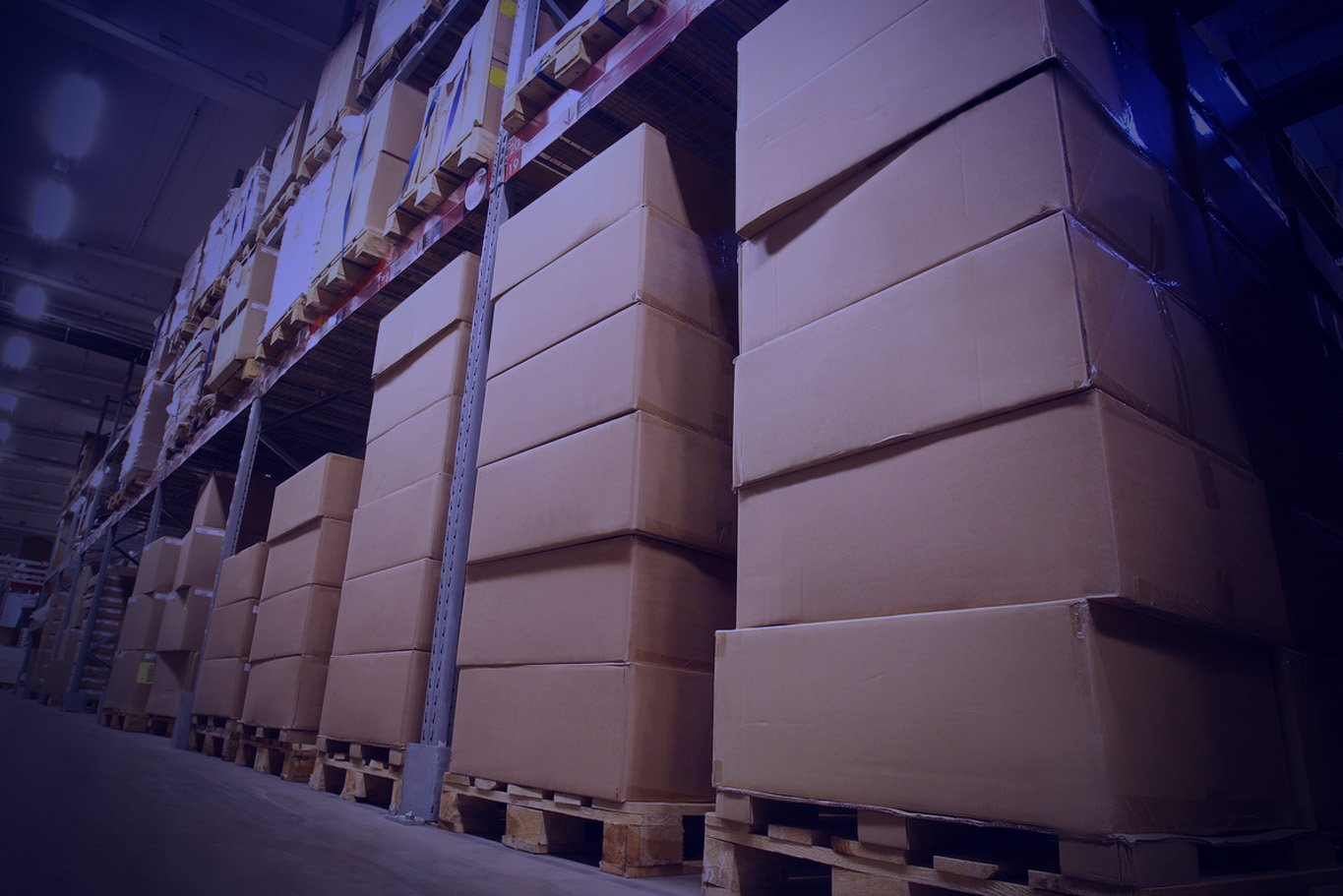 Apparel Warehouse Boxes